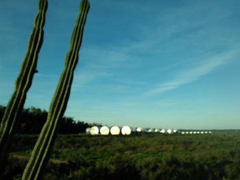 Somewhere in Milduran win yards, storage tanks